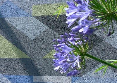 Greenspace Garden Design - Split Level Contemporary Garden - Detail of abstract wall art