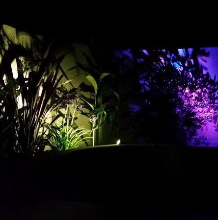 Lighting at night - cropped